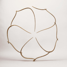 Circular Form in Ten Pieces | wenge wood | 38 x 35 x 2 inches