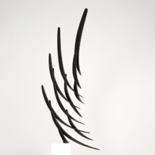 Murmuration Study 1 | carbon fiber composite | 52 x 33 x 8 inches